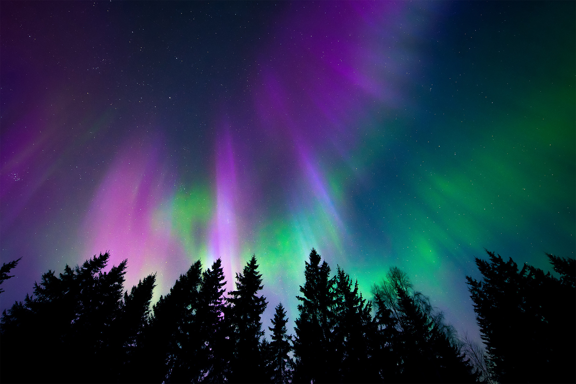 Captivating Northern Lights 2020 | Ottawa, Ontario | Northern Lights 2020 | Arctic U0026  Northern Conference Ideas